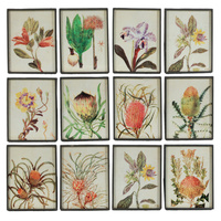 Flora Life Wall Art native flowers