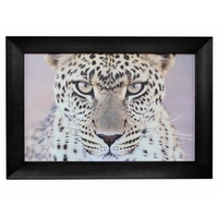 Leopard Portrait Wall Art